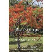beneath the flowering flamboyants - bev clarke - textstream