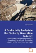 A Productivity Analysis in the Electricity Generation Industry - Halabi, Claudia - VDM Verlag