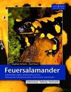 Feuersalamander: Salamandra algira, Salamandra corsica, Salamandra infraimmaculata, Salamandra salamandra