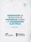 Asignacion de Derechos de Propiedad Sobre la Transmision Electrica - Fernando Nicchi/Eudeba - Eudeba