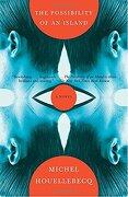 The Possibility of an Island (Vintage International) (libro en Inglés) - Michel Houellebecq - Vintage Books