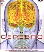Enciclopedia el Cerebro: Guia Ilustrada de su Estructura Funciones y Trastornos C/Dvdrom - Rita Carter - Dorling Kindersley