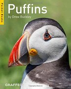 Puffins (Pocket Books)