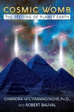 portada Cosmic Womb: The Seeding of Planet Earth