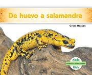 De huevo a salamandra / Becoming a Salamander (Animales que cambian / Changing Animals) (Spanish Edition)