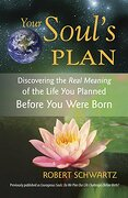Your Soul's Plan: Discovering the Real Meaning of the Life you Planned Before you Were Born (libro en Inglés) - Robert Schwartz - Frog Ltd