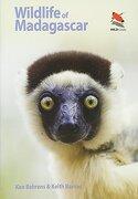 Wildlife of Madagascar (Princeton University Press (WILDGuides))