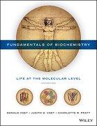 Fundamentals Of Biochemistry: Life At The Molecular Level - Donald Voet,judith G. Voet,charlotte W. Pratt - John Wiley & Sons Inc