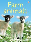 Farm Animals (Usborne Beginners) (Usborne Beginners) (libro en Inglés) - Katie Daynes Staff - Usborne Publishing Ltd