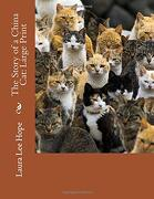 The Story of a China Cat: Large Print (libro en inglés)
