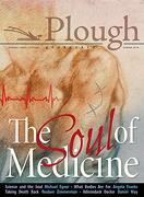 Plough Quarterly no. 17- the Soul of Medicine (libro en inglés)