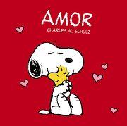Amor (Castellano - Bruño) - Vv. Aa. - Editorial Bruño