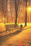 Notebear: Winter Evening in a Central Park Journal (Travel Notebook & Diary With Alternate Blank & Lined Pages) (libro en inglés)