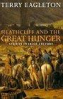 Heathcliff and the Great Hunger: Studies in Irish Culture (libro en Inglés)