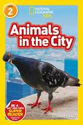 National Geographic Readers: Animals in the City (L2) (National Geographic Kids, Level 2) (libro en Inglés) - National Geographic Kids - National Geographic Kids