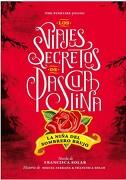 Los Viajes Secretos de Pascualina. La Niña del Sombrero Brujo - Francisca Solar,Miguel Ferrada - The Pinkfire
